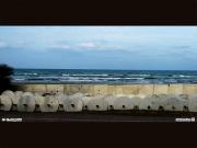 "06/04/2011 - ""Barriere artificiali"" a Senigallia"