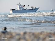 27/04/2011 - Barca ormeggiata a Senigallia
