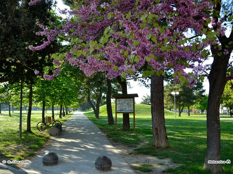 02/05/2011 - Primavera al Parco della Pace a Senigallia